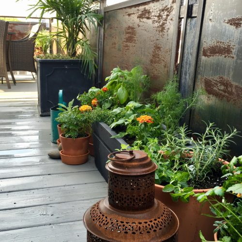 City Deck Herb Garden 1b